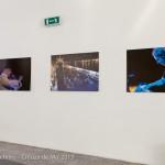 13_07_29-Creuza-de-Ma-Carloforte-photo_Eugenio_Schirru-_MG_2762